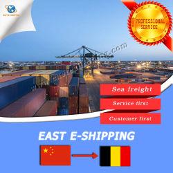 Het beste Verschepen voor Overzeese van de Container Vracht van Ningbo aan België