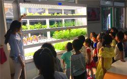 Дом сева овощей светодиодный индикатор для культуры Soilless гидропоники машины