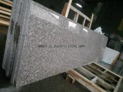 Pflasterung-Stein-Fliese-/Floor/Stairs/Paving-Granit-Steinbruch-Polierplatte des bester Preis-populäre chinesische Granit-G687