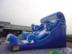 Glissière gonflable extérieure Dolphin pour les ventes