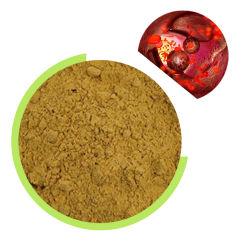 ISO Alimentation d'usine vert naturel extrait de grains de café en poudre