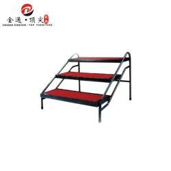 Scaletta della piattaforma della fase della mobilia della festa nuziale