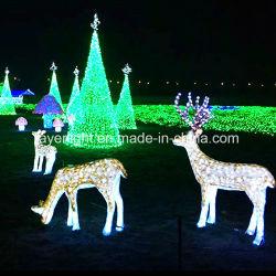LED de vacances de Noël professionnelle commerciale de l'usine de feux de Rennes