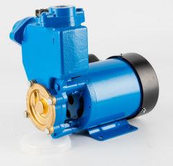 Amplificador de alta presión silenciosa de hierro fundido automático Micro periférico Votex jardín interno de la superficie de riego Self-Prming Home-Use Self-Suction Limpie la bomba de agua