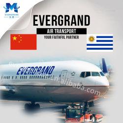De betrouwbare Verschepende Dienst van de Vracht van de Lucht van China aan Uruguay/Montevideo