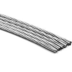 Filo di acciaio laminato a caldo galvanizzato fornitore del filo di acciaio della Cina
