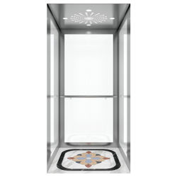 Racermax Quantidade Alta Villa Elevador Elevador personalizado com uma paragem de serviço com preços baixos