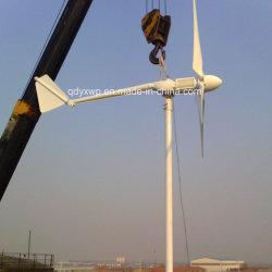 2kw de Turbine van de wind voor het Gebruik 24V 48VDC van het Huis