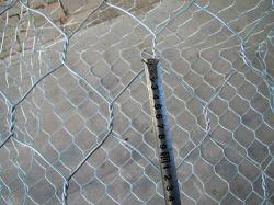 PVCによって塗られるオランダによって溶接される金網