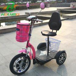 Passagier Elektrische Trike Met drie wielen/de Gesloten Elektrische Driewieler van de Passagier voor Wholesales