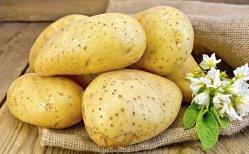 新しいポテト(zao da baiの黄色い中心)のための健康食品