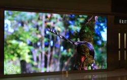 Для использования внутри помещений P1,25 полноцветный светодиодный дисплей для поверхностного монтажа панели для рекламы