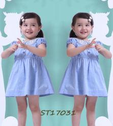 Blaue Smocked Schutzkappe Sleeves Baumwollkleider für Kleinkind-Mädchen