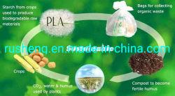 Um especial Eco-Friendly Poliésteres-PLA