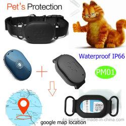 애완 동물 고리 Pm01를 가진 새로운 작은 방수 애완 동물 GPS 지능적인 추적자