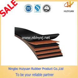 Tipo de Correia Transportadora Heat-Resistant ordinário