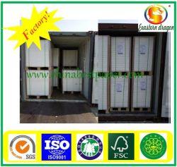 Blanco 250 g de empaquetado de alimentos Cartulina/GC-FBB grados