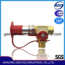 QF-T1H4 Válvula de enchimento de combustível GNV com bico (auto peças)