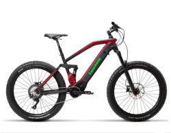 La suspension totale E Vélo de montagne /véhicule électrique avec l'alimentation batterie au lithium
