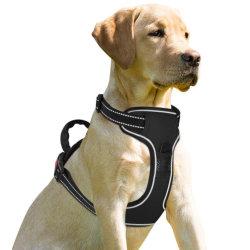 Chicote de Cães grandes com fita refletiva No-Pull, Ajustável e respirável Chicote Pet