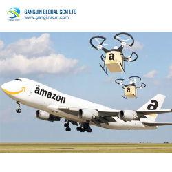Воздушные грузовые перевозки для бассейна реки Амазонки Fba отгрузки Китая в Америке Professional быстрый надежный Express курьерской доставки