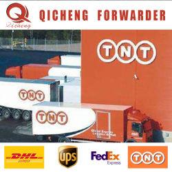 Shenzhen UPS Línea Especial de servicio de la puerta de DHL Express Internacional de las tarifas de envío a Alemania