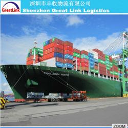 Trasporto su ordinazione del carico del mare del contenitore di ciambella del commestibile di stampa della fabbrica