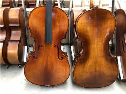 Berufsaufsteigen-festes geziertes Cello