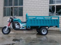 300cc vijf Motor Trike van de Lading van de Waterkoeling van Wielen De Omgekeerde voor Verkoop