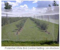Compensación de áfidos Insectos contra agrícola Net