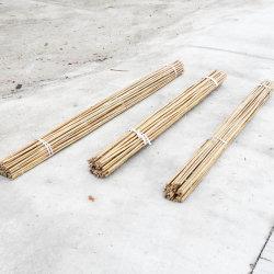 Matières premières de bambou canne de bambou Perche du bambou pour l'usine