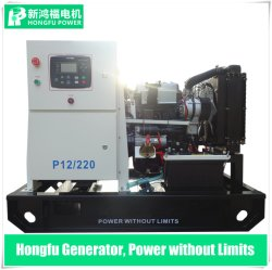 Diesel Genset van 10kVA 12.5kVA 30kVA 55kVA met Motor Yangdong