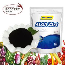 Extracto de Algas