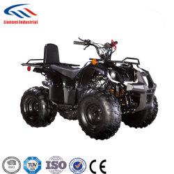 저렴한 ATV 판매 110cc ATV 가솔린 ATV Lianmei ATV