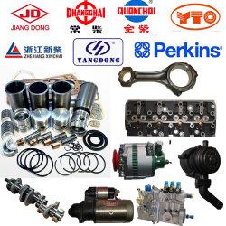 Yto Laidong Jiangdong Yangdong Changhchai Xinchai Quangchai Dieselmotor-Teile