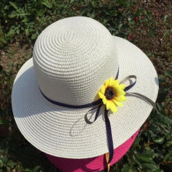 Nouveau style de l'été Sunblock Chapeau de paille