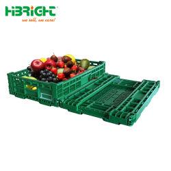 Fazenda colapsável plástico Ovo de dobragem Caixas do caixote de frutas e produtos hortícolas