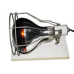 Lampe de feu Pet UL Reptile le collier sur le fil lampe Cage Clamp® Reptile de la lumière avec base de bois de chauffage