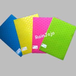 PVC 문서 사업 폴더, 플라스틱 문서 커버