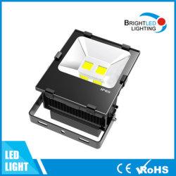 CE, Luz de Inundación al Aire Libre de la Guarnición 100W LED de RoHS