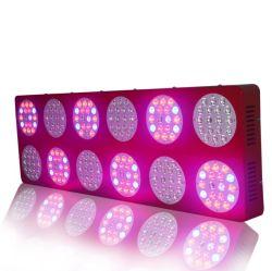 Greensun Znet12 LED는 가벼운 Hydroponic 수력 전기 가득 차있는 스펙트럼 성장 Veg 꽃 위원회 램프를 증가한다