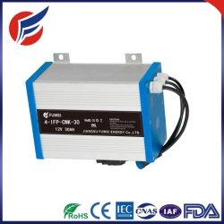 pacchetto solare ricaricabile della batteria dello ione del Li del ferro del litio di memoria di 12V/24V 30ah LiFePO4