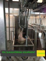 L'équipement d'abattage de porcs--superbe machine