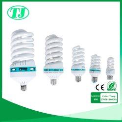 Spiraalvormige Energie - het Licht van de besparingsLamp CFL
