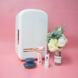 12L の携帯用化粧品の美ピンクの冷却装置のメイクスキンケアの小型 車用冷蔵庫もある