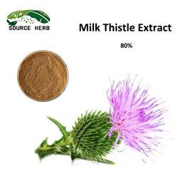 Produttore piante naturali estratto latte estratto latte estratto latte estratto latte semi di cardo Estrarre