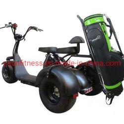 Buggy di caccia elettrica. Due posti a sedere, golf Buggy, fuoristrada Buggy, ATV Golf Triciclo Scooter per adulti