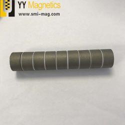 Permanente seltene Massen-Samarium-Kobalt-Magnet SmCo Magneten