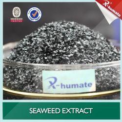 100% Natural fertilizante orgánico Sargassum Extracto de Algas Marinas de fertilizante de hojuela