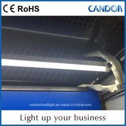 إنارة LED داخلية عالية الوظائف باللون LLumen تنتجها الجهة المصنعة للمحترفين